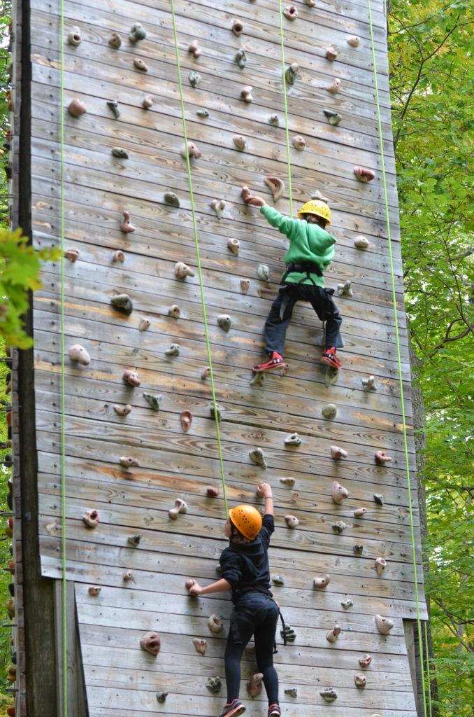 Dual climbers